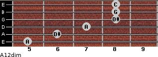 A1/2dim for guitar on frets 5, 6, 7, 8, 8, 8