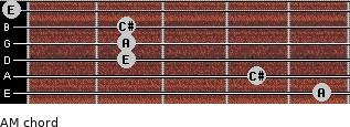 AM for guitar on frets 5, 4, 2, 2, 2, 0