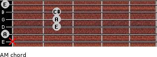 AM for guitar on frets x, 0, 2, 2, 2, 0