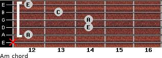 Am for guitar on frets x, 12, 14, 14, 13, 12