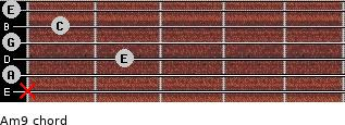 Am9 for guitar on frets x, 0, 2, 0, 1, 0