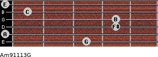Am9/11/13/G for guitar on frets 3, 0, 4, 4, 1, 0