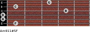 Am9/11#5/F for guitar on frets 1, 0, 0, 4, 1, 3