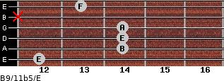 B9/11b5/E for guitar on frets 12, 14, 14, 14, x, 13