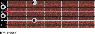 Bm for guitar on frets x, 2, 0, x, 0, 2