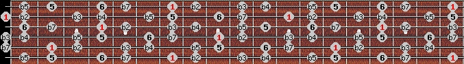 diminished (halftone - wholetone) scale on key B for Guitar