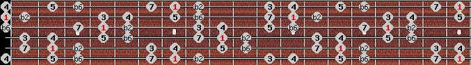 double harmonic scale on key B for Guitar