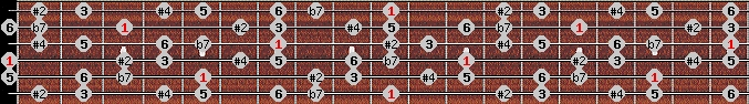 hungarian major scale on key D for Guitar