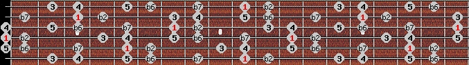 major phrygian scale on key D for Guitar