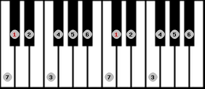major scale on key C#/Db for Piano